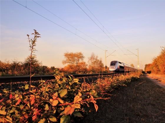 TGV Frankfurt - Paris