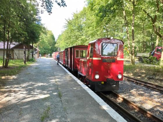 die Cottbusser Parkeisenbahn