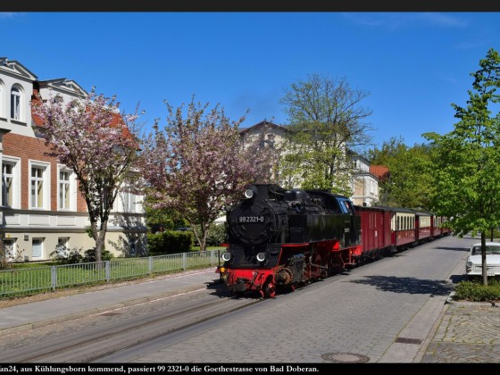 Fotozug Tanago bei der Bäderbahn Molli 2019