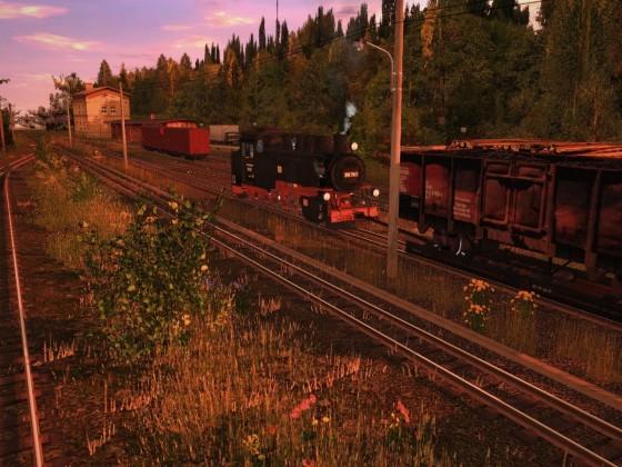 Sächsische Schmalspurbahn T:ANE