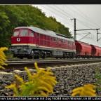 232 088-5 von Salzland Rail Service mit Zug 94088 nach Wismar, im Bf Lübstorf