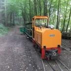 Eine leere Bahn mitten im Wald?