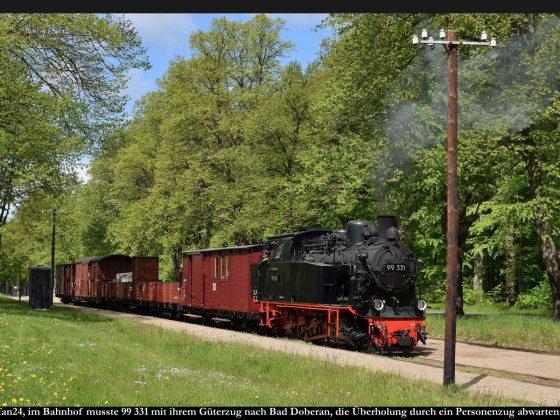 Fotozug Bäderbahn Molli Bf Rennbahn 2019